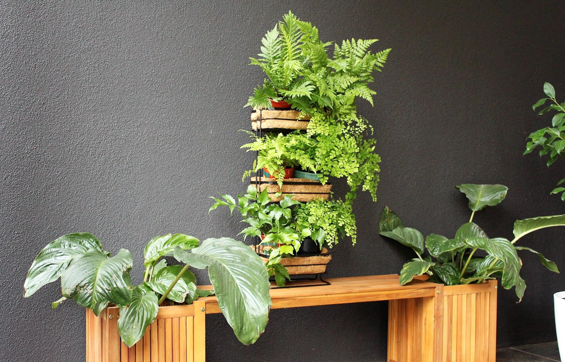 Mini vertical garden kmart styling - Vertical gardens miniature oases ...